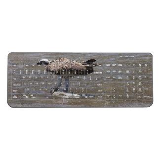 California Osprey Bird Wildlife Wireless Keyboard