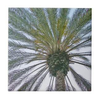California Palm Tree Ceramic Tiles