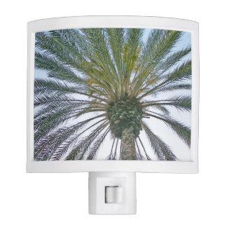 California Palm Tree Nite Light