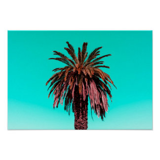 California Palm Tree Poster