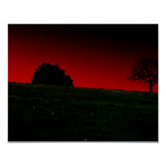California photography poster trees dark red green