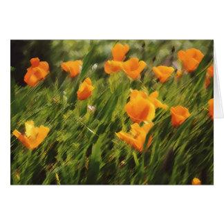 California Poppies 01 Card