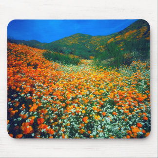 California Poppies and Popcorn wildflowers Mouse Pad