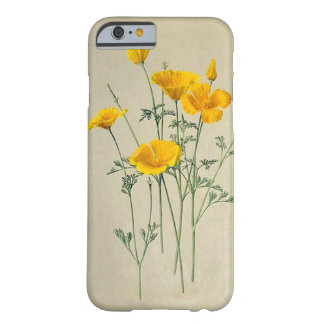 California Poppies iPhone 6/6S Barely There Case