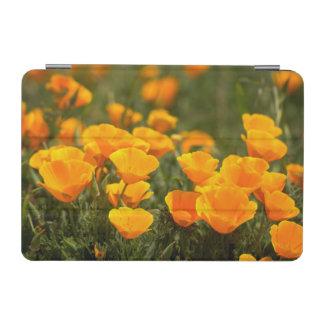 California poppies, Montana de Oro State Park iPad Mini Cover