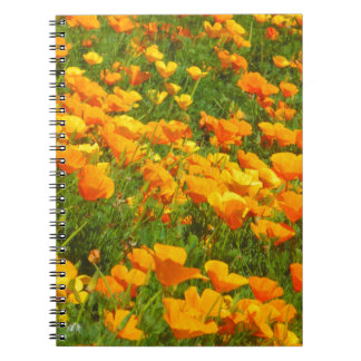 California Poppies Notebooks