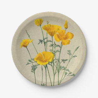 California Poppies Paper Plates