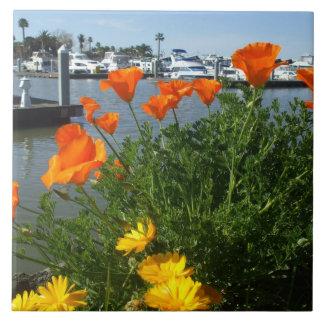 California Poppies Tile