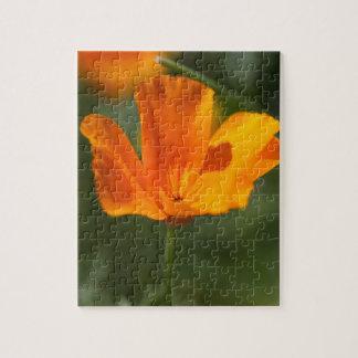 California Poppy (Eschscholzia californica) Jigsaw Puzzle