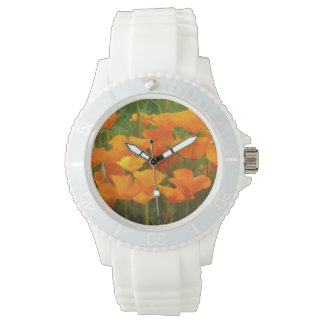 california poppy impasto watch