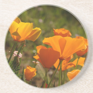 California Poppy Photography Coaster
