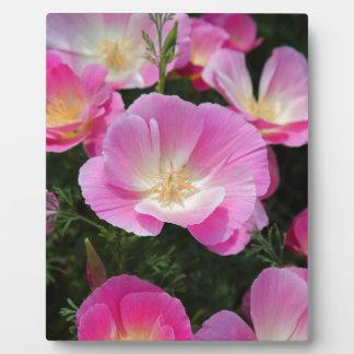 California Poppy Plaque