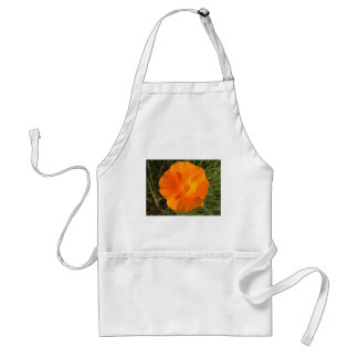 California Poppy Standard Apron