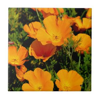 """""""California Poppy"""" Tile"""