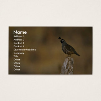 California quail business card