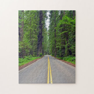 California redwood forest and highway puzzle