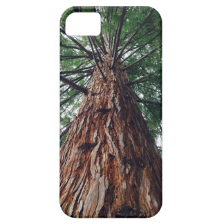 California Redwood phone cover