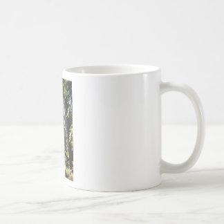 California Redwoods Coffee Mug