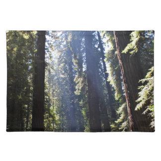 California Redwoods Placemat