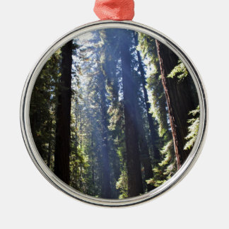 California Redwoods Silver-Colored Round Ornament