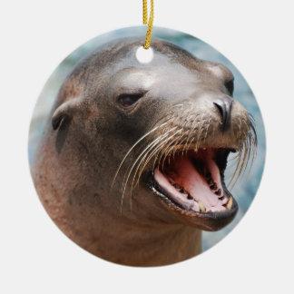 California Sea Lion Ornaments