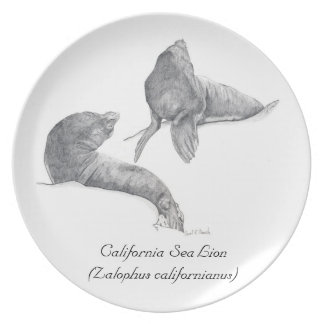 California Sea Lions Plate