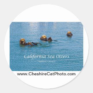California Sea Otter California Products Classic Round Sticker