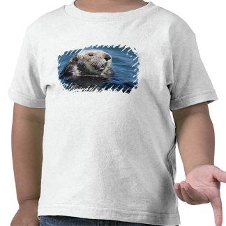California Sea Otter Enhydra lutris) grooms 2 Tee Shirt