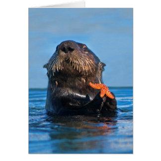 California Sea Otter Holding Starfish Card