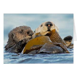 California Sea Otters at Morro Bay Card