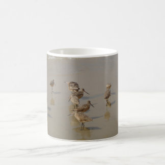 California Shore Birds Coffee Mug