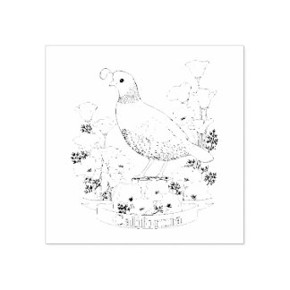 California State Bird and Flower Coloring Page Rubber Stamp
