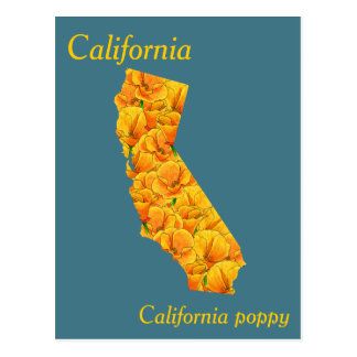 California State Flower Collage Map Postcard