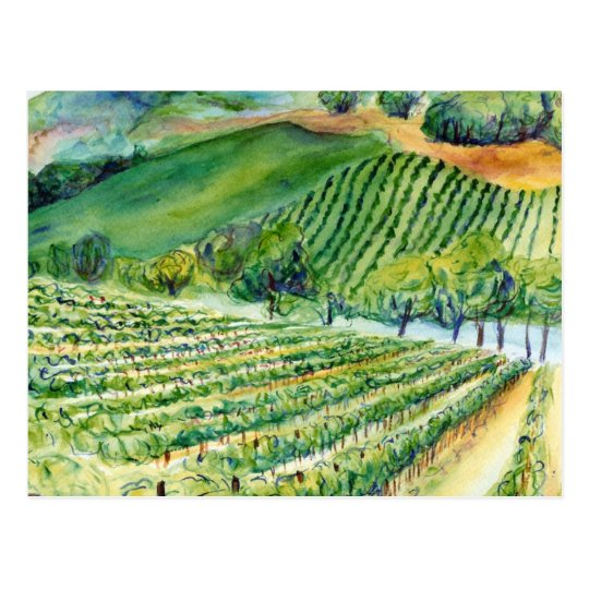 California Vineyard Postcard