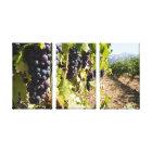 California Wine Country Canvas Print