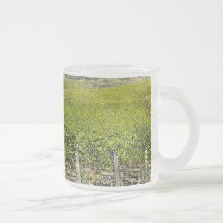 California Wine Vineyard Frosted Glass Coffee Mug