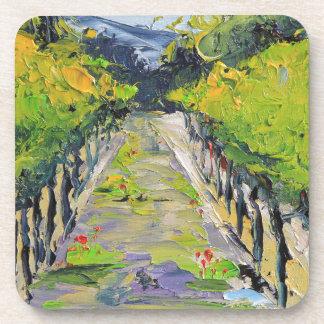California winery, summer vineyard vines in Carmel Coaster