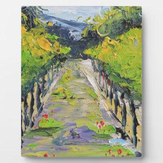 California winery, summer vineyard vines in Carmel Plaque