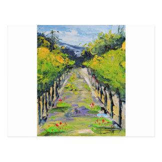 California winery, summer vineyard vines in Carmel Postcard