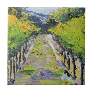 California winery, summer vineyard vines in Carmel Tile