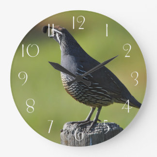 Californian quail large clock