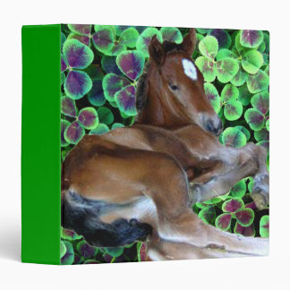 "CALISTA IN CLOVER 1.5"" Ring Binder"