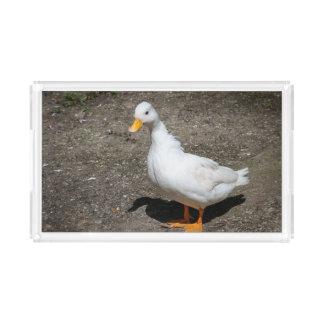 Call duck acrylic tray