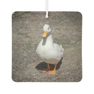 Call duck air freshener