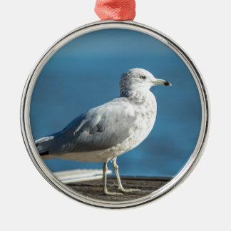 Call me M.Seagull Metal Ornament
