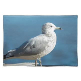 Call me M.Seagull Placemat