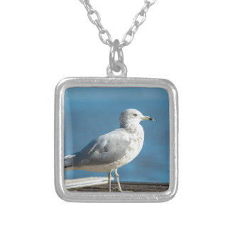 Call me M.Seagull Silver Plated Necklace