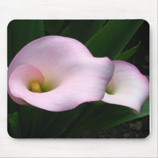 Calla Lilies Mouse Pad