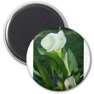 Calla Lillies (white) 2 Inch Round Magnet