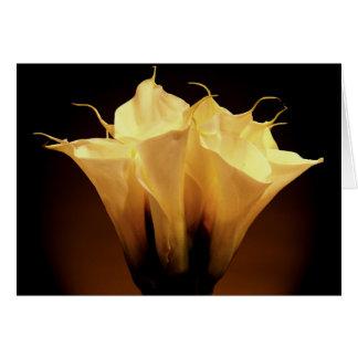Calla lily bouquet card